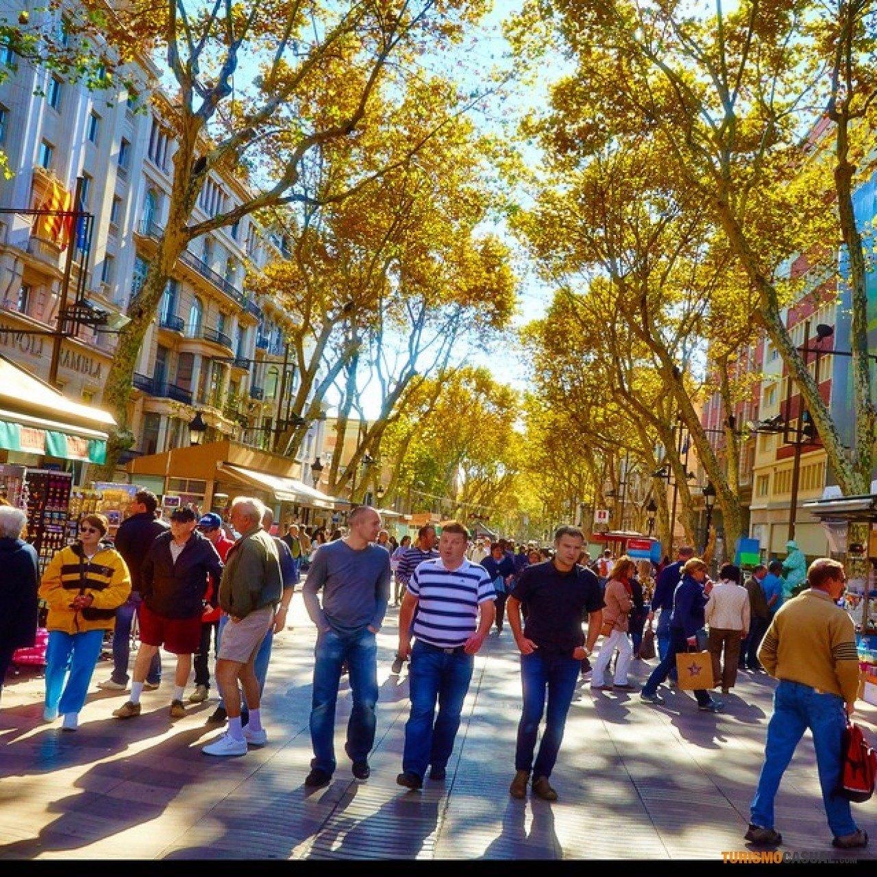 La velocidad y la vida alquilar un coche barato en barcelona - Oficinas europcar barcelona ...